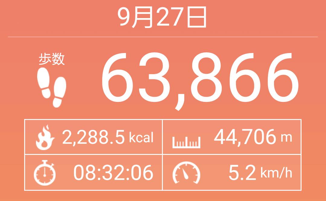 片道41.5km、63,866歩。京都から奈良まで歩いてみた!【前編】
