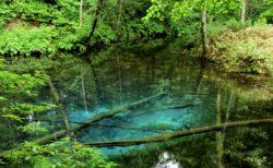 感動の透明感。神秘のブルーに出逢う 北海道・神の子池