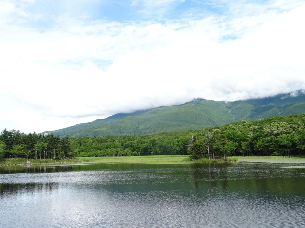 緊張感のある散策…。ヒグマの活動期7月に、北海道・知床を歩いてみた