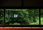 夏のおわりに青もみじ。京の里山・大原で写真さんぽ