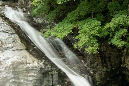 みたらい渓谷へ夏のドライブ! 青もみじが美しい渓谷は涼しく快適だった!